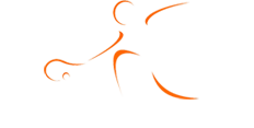 Logotipo M&M Sports